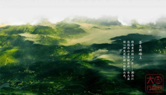 大益茶文化解读系列|NO8·群峰之上