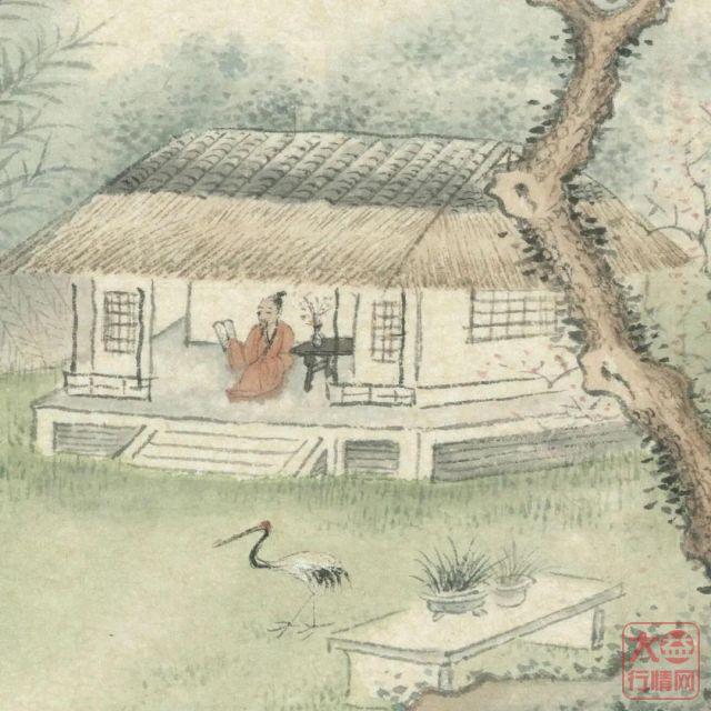 大益茶文化解读系列|NO30·早春乔木