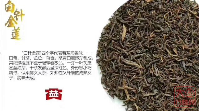 【1801】50g金针白莲熟散茶即将上市