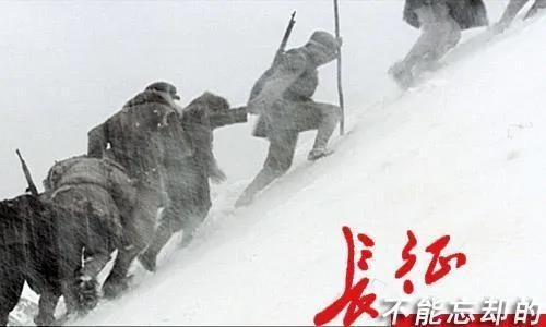 大益茶文化解读系列 NO15·长征纪念茶系列